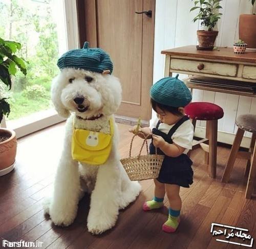سگ پشمالو بامزه و صاحب نی نی کوچولو,سگ ملوس