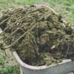 نحوه استفاده از کود حیوانی در خاک